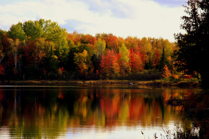 10. Fall foliage in the Moosehead Lake region.