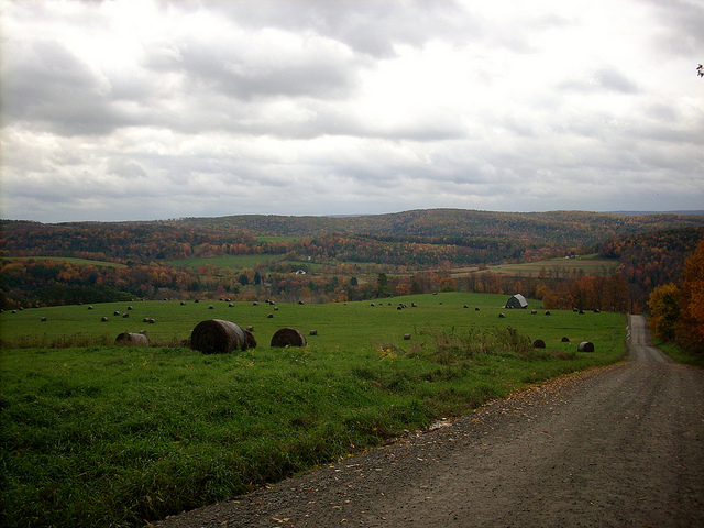 7. This austere landscape can be found in Lawrence Township, Tioga County.