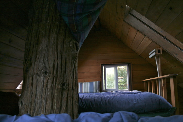 Here's their cozy loft, where you can fall asleep looking up at tree branches and the stars.