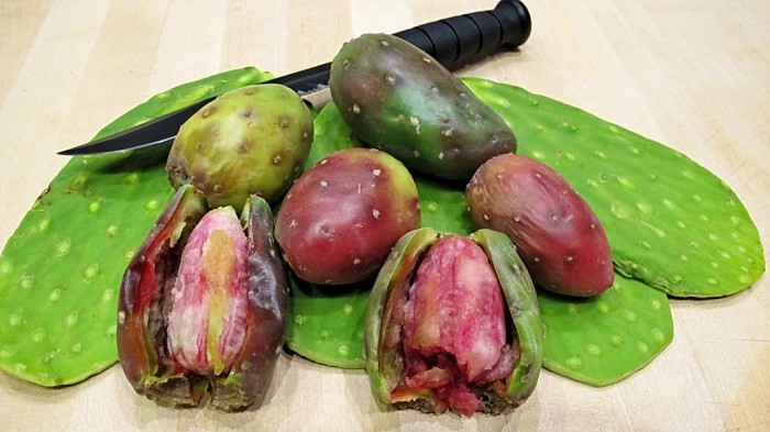 9. Some Arizonans eat an assortment of foods that may come across as weird: cactus, mesquite pods, snake, javelina, and chupalines.