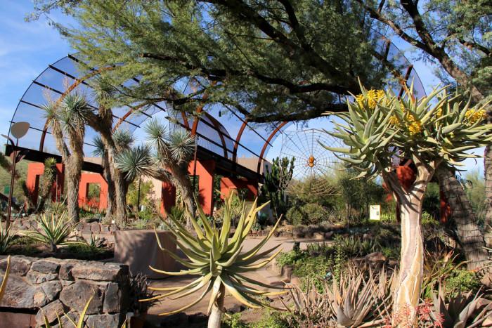 2. Desert Botanical Garden, Phoenix