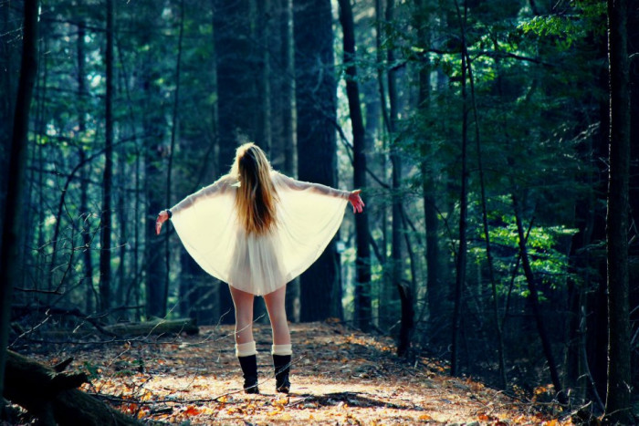 5.  Fairy-like wings in the forest.