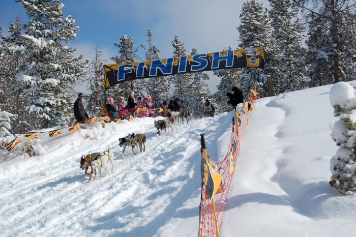 4. Dog Sled Racing