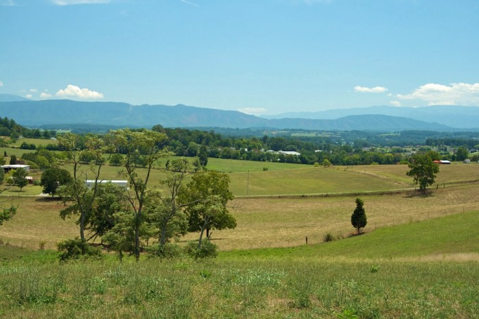 7) A Tennessee country view