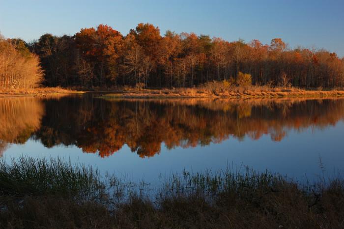7) Fall Creek Falls Lake