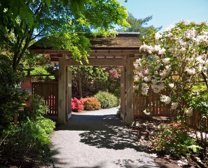 4. Explore a beautiful botanical garden.