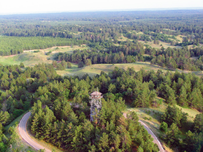 7. The world's largest hand-planted forest is Halsey National Forest near Thedford, which covers over 90,000 acres.