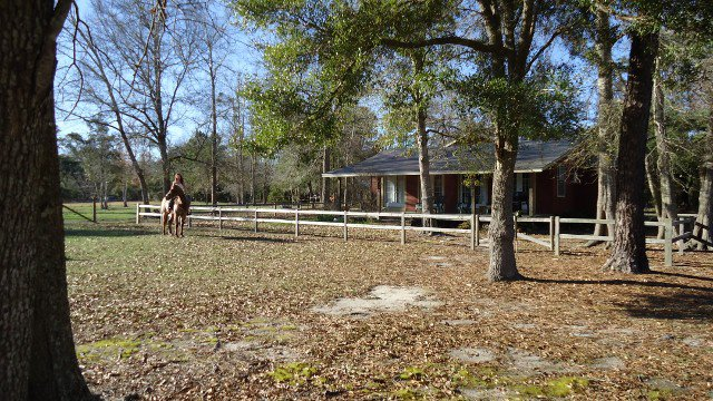 7. Green Woods Stables Rustic Cabin, Biloxi
