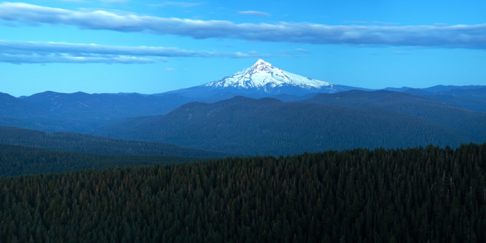 7. Sherrard Point on Larch Mountain