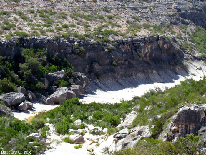 7. Seminole Canyon State Park (Comstock)