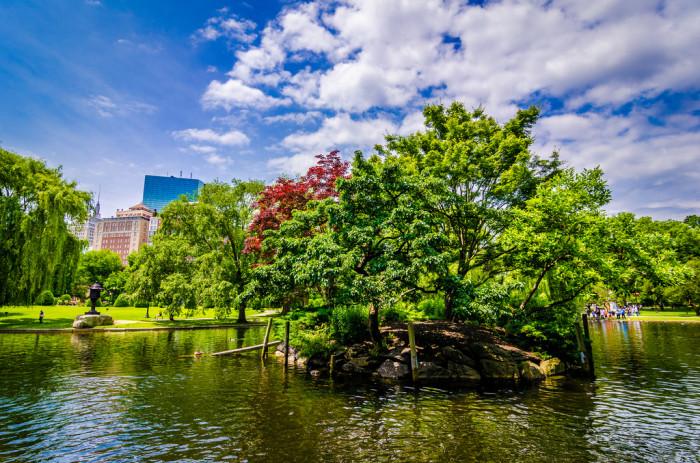 26. Boston Public Gardens island