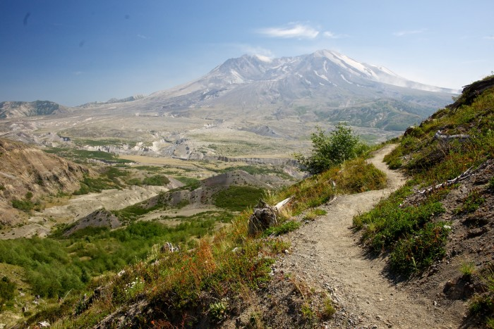 14. A striking view of the iconic Mount St. Helens, as seen from a nearby trail.
