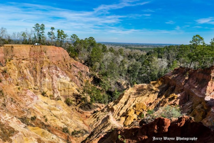 8. Mississippi's Little Grand Canyon (near Foxworth)