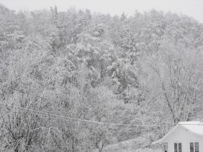 8) A Tennessee Winter