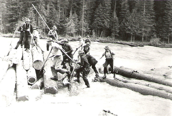 19. Hardworking Priest River log drivers, 1915