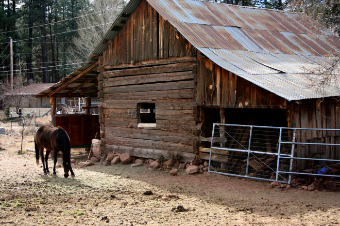 11. Here is an old barn apparently still in use in Pine. Lovely!