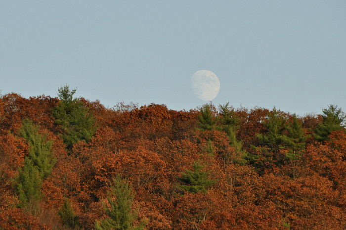 23.  An early moonrise or a late sunset?