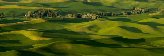 1. The rolling hills of the Palouse look otherworldly from this view at Steptoe Butte State Park.