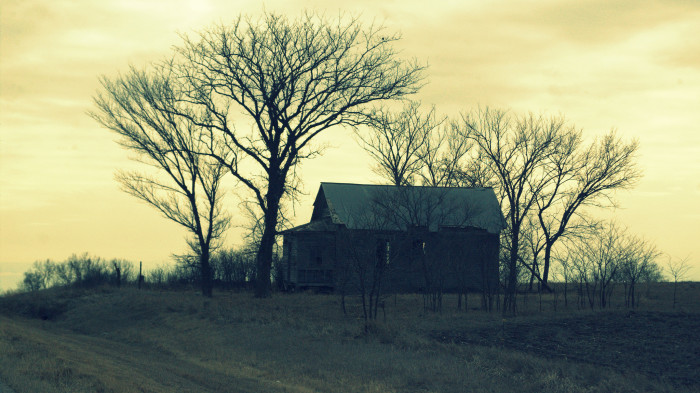 11. Abandoned houses take on a sweet, romantic feel that they just wouldn't have in the city.