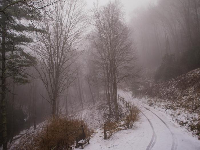 13. Uncharted roads.