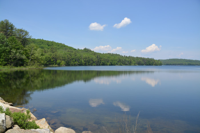 2. If that lake isn't perfectly clear, they're not swimming.