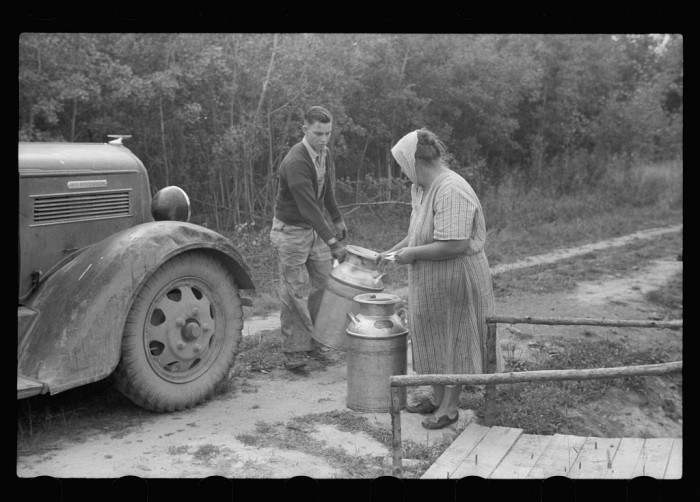 10. Mrs. Howard in Aitkin Country makes her living selling the milk from her small farm.