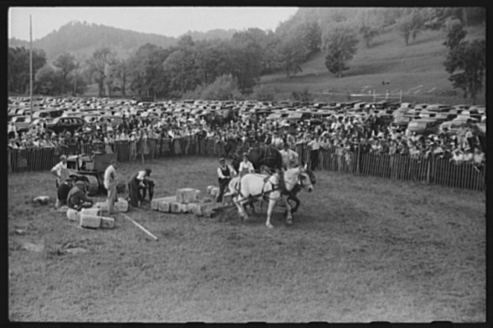 """23.  Tunbridge, Vermont. Weight-pulling contest for horses at the """"World's Fair."""""""