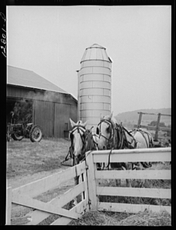 3. Another shot of the farm near Pine Grove Mills, from 1941.