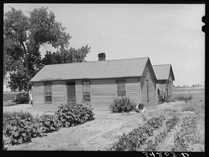 """11. """"Home of Ernest W. Kirk Jr., FSA (Farm Security Administration) client near Ordway, Colorado. He runs an irrigated forty-acre farm which he rented from his landlord, a judge. His landlord is purchasing the eighty acres next to him, so that he may have 120 acres altogether."""""""