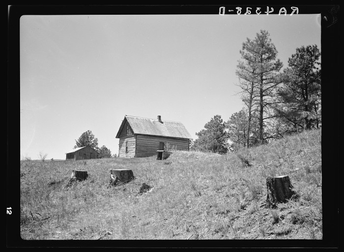 14. This homestead in Dawes County was improperly developed. The occupants cut down forested land in Pine Ridge to build their home and outbuildings - 1936.