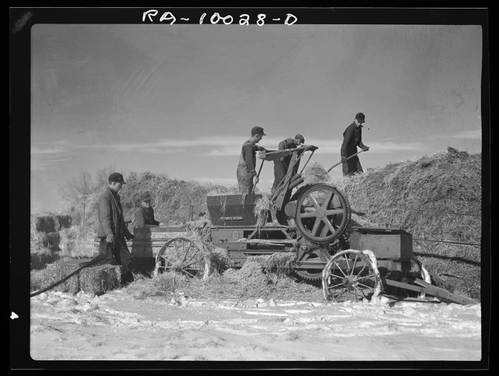 11. A group of farm workers bale hay in Clay County.
