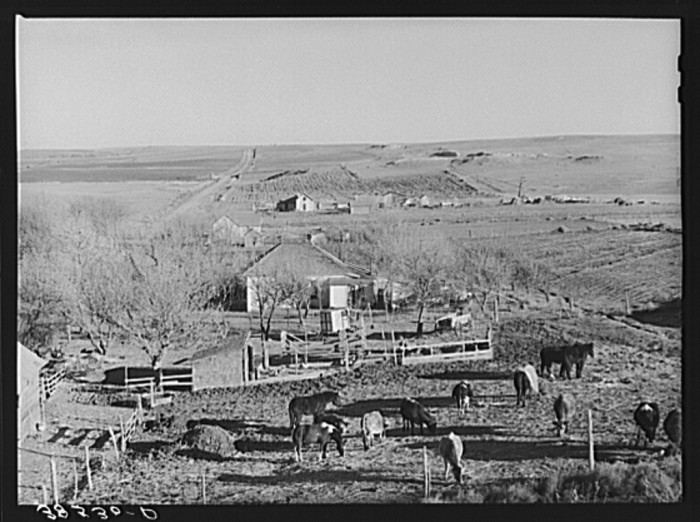 "1. ""Farmstead and farmland near Almena."""