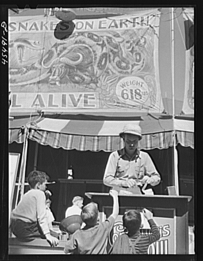 4.  Buying tickets for the snake show at the Rutland Fair.