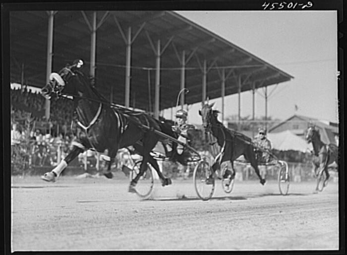 5.  The sulky races at the Rutland Fair.