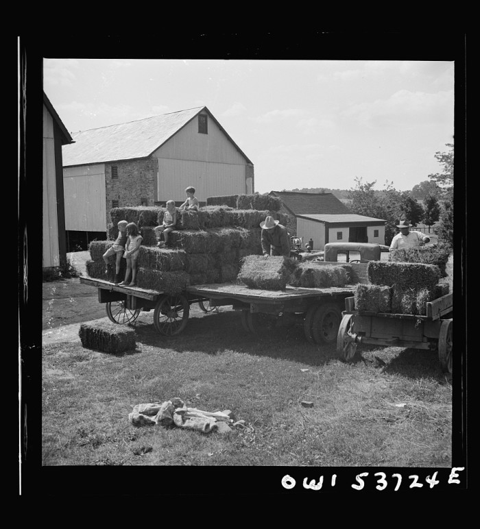 10. Some chidlren sit atop bales of hay in 1944 at Spring Run Farm in Dresher.
