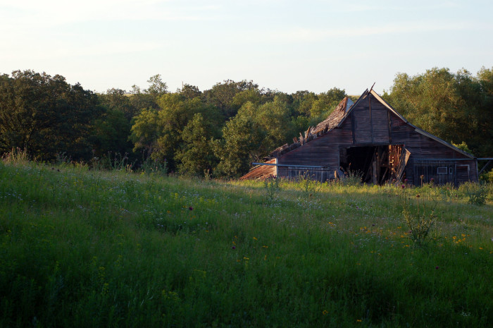 4. Even if barely, this old barn is still standing