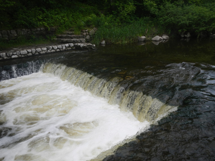 5. Turtle River State Park