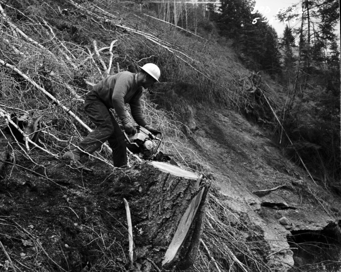 4. This candid shot shows a logger working near Z Canyon, located in Pend Oreille County in northeastern Washington.
