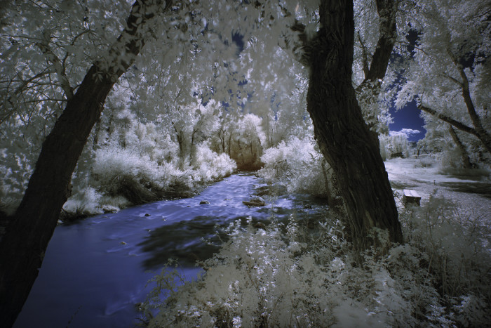 2. Wind River, East Fork
