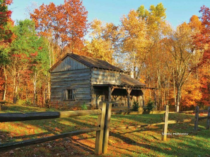 20. A cabin in the woods can be frightening, but not at Saunders Spring Park.