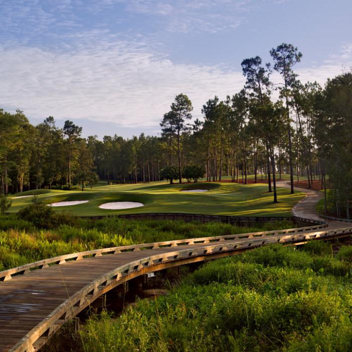 8. GoDaddy Bowl Celebrity Golf Tournament - Robert Trent Jones Golf Trail (Magnolia Grove)