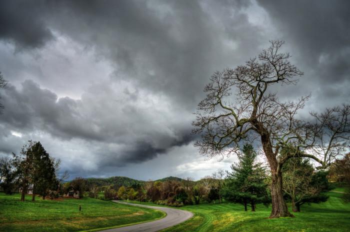 4. Birdwood Drive at the Birdwood Golf Course in Charlottesville.