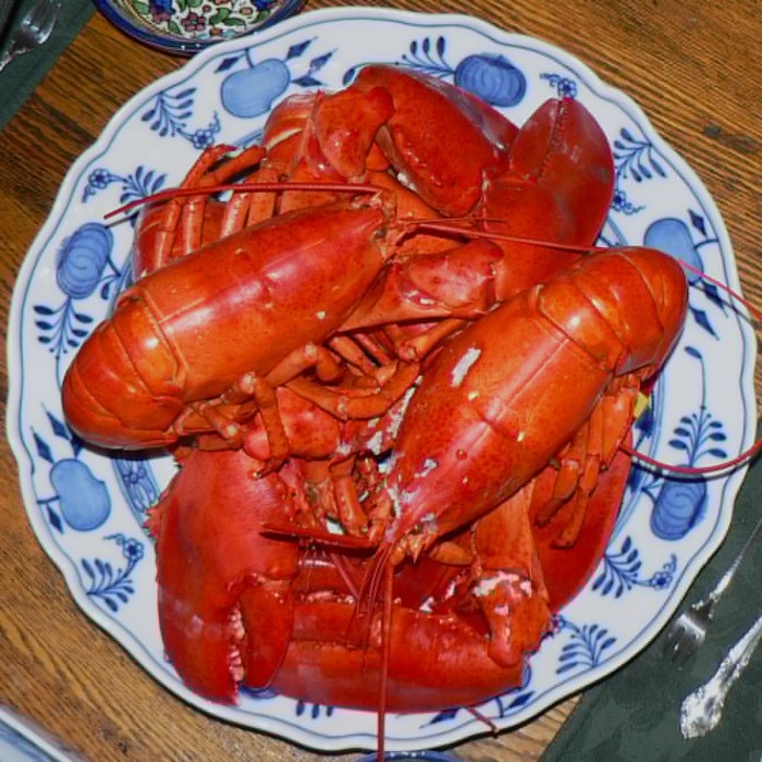 13. More specifically, lobstah.