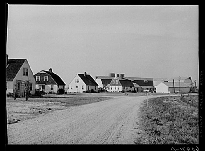 CoOp Houses