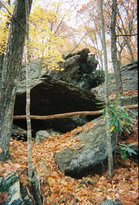 11. Devil's Den Nature Preserve, Fancy Gap