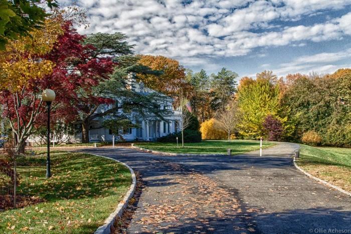 2. Frelinghuysen Arboretum, Morristown