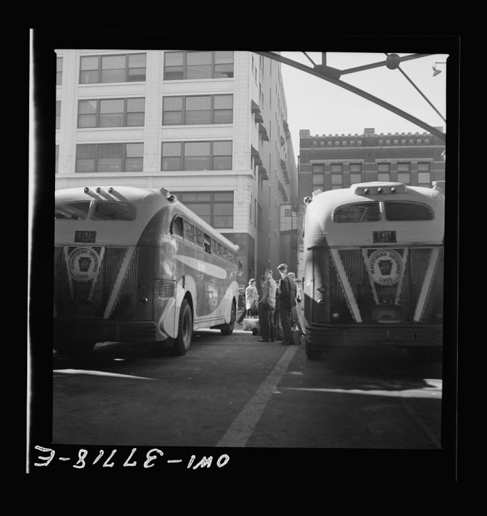 Greyhound Busses