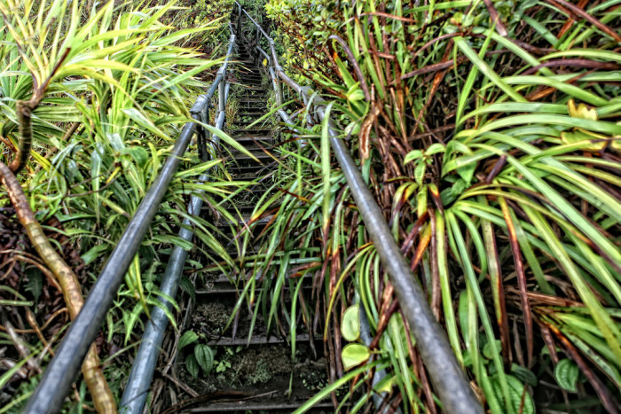 A community group, Friends of the Haiku Stairs, hope that, one day, the stairs will be repaired and rendered legal – perhaps with a permit fee in order to maintain the hike for years to come.