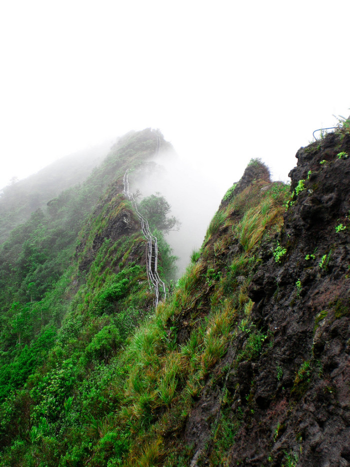 A Hawaii group is already operating illegal tours up Moanalua Valley and the Haiku Stairs, charging $200 for each individual – and if it were legal, and the Friends of the Haiku Stairs could charge, say $100 for tourists to experience the hike. This could raise an estimated $1.7 million annually if there were 100 climbers took on the stairs every day.