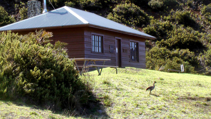 4) Haleakala Wilderness Cabins, Maui